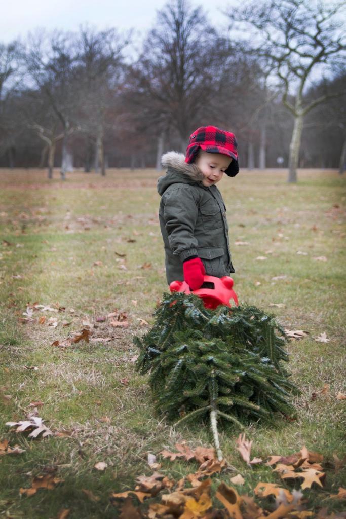 Matthew_Christmas_Tree_Photo_Shoot-14 copy 2