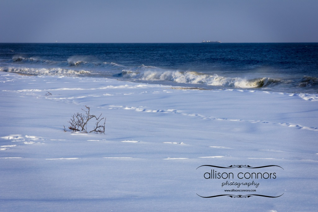 Snowy_Beach_Web