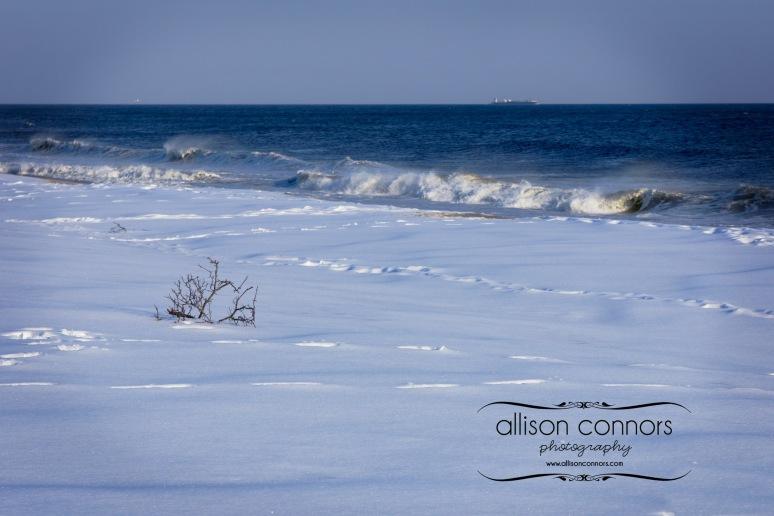 Snowy_Beach_Web