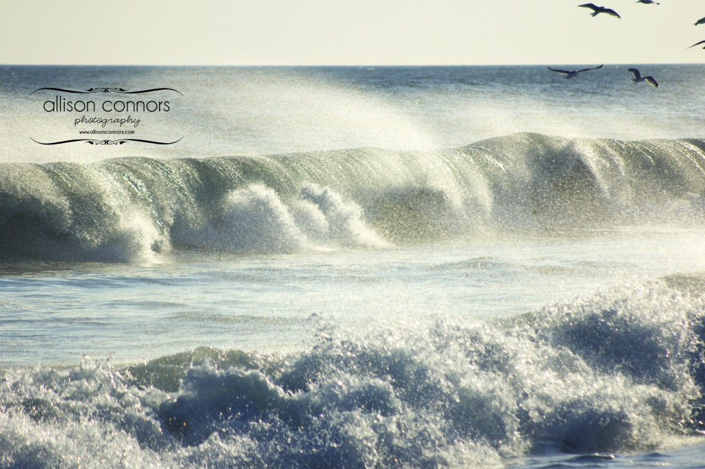 Winter_Surf_Web